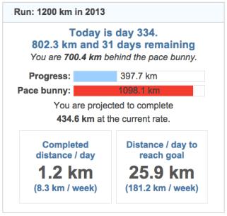 running goals 20131130