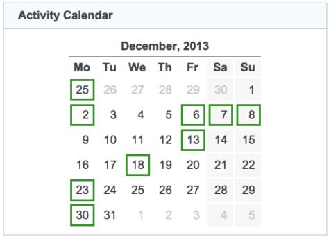 activity calendar 20131231