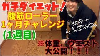 【ダイエット】ぽちゃなゆうきち、腹筋ローラー1ヶ月チャレンジ!!【1週目】
