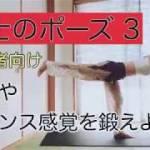 おうちで簡単ヨガ🧘🏻♀️体幹、バランス感覚を鍛えながらダイエットできる🤩#8 戦士のポーズ3