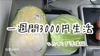 【12】一週間食費2人で3000円生活 節約生活ダイエット日記