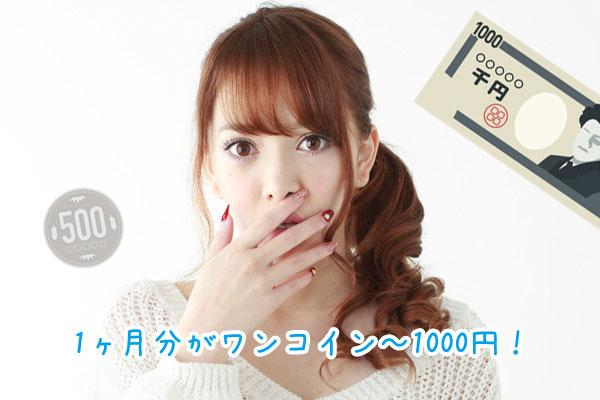 1ヶ月分がワンコイン~1000円!