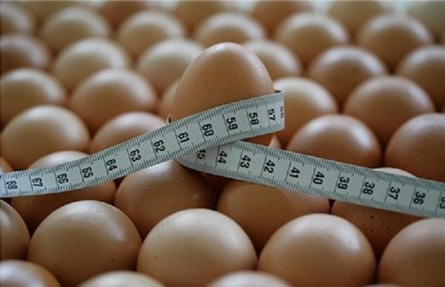 Творожная диета и ее разновидности: оптимальное похудение. Двухнедельная диета с овощами