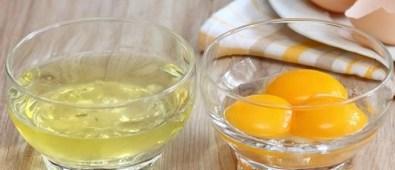 Diferencias entre yema y clara de huevo