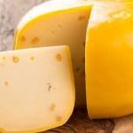 queso gouda