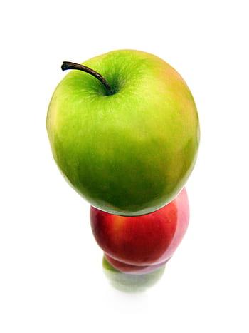 Dieta sostenible