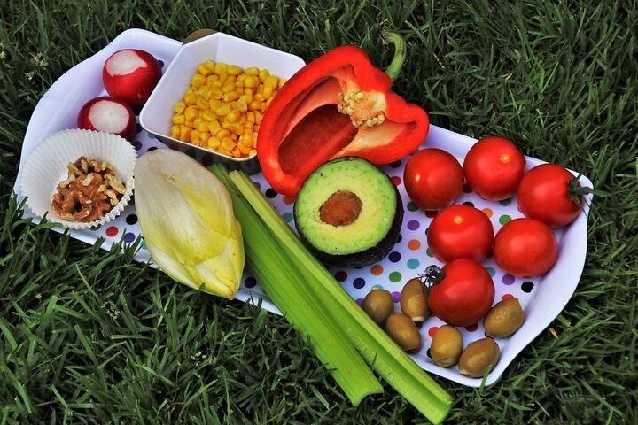 dieta composicion