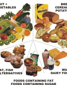 Balance of good health also diet and fitness resources shop for weight loss home rh dietandfitnessresources