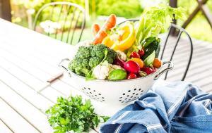 Alimentación bio o dieta ecológica