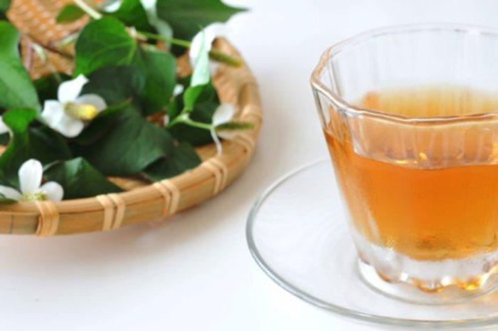 どくだみ茶ダイエットの効果と成功するやり方や口コミ!