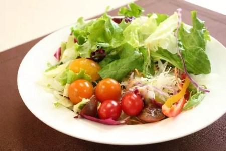 サラダダイエット方法の効果とおすすめのレシピや口コミ!