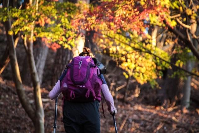 山登りダイエットで成功するポイント!危険性はないの?