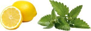 limonmenta