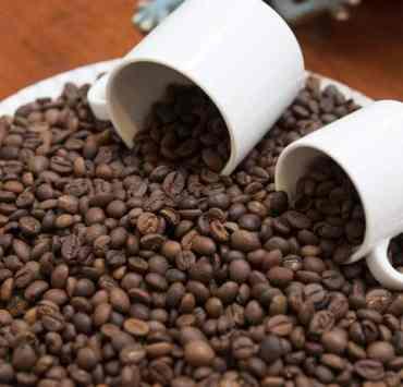 odmiany kawy