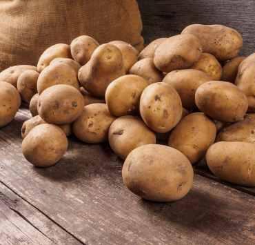 ziemniaki typy