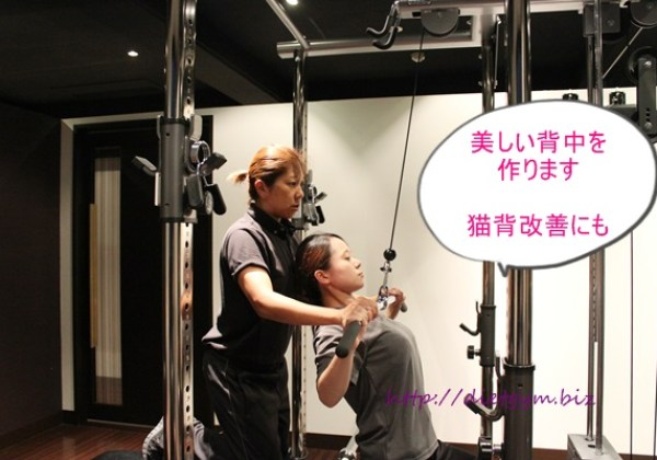 背中の筋肉を鍛えるトレーニング