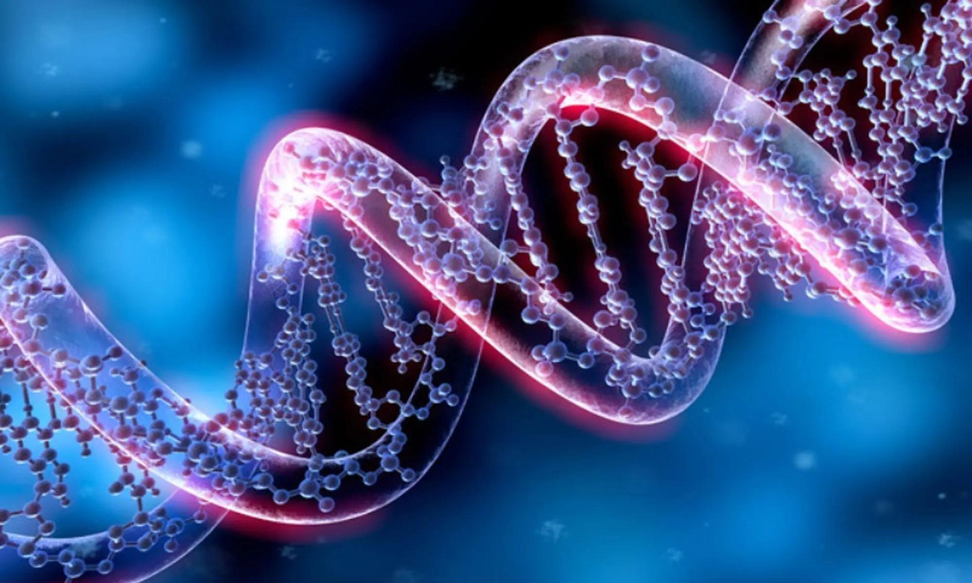 image of Genome damage