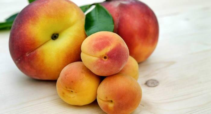 Frutas de temporada: Albaricoques, nectarinas y melocotones
