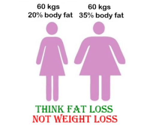 fat or weight loss