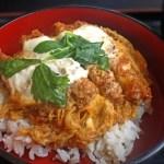 ダイエット中の丼レシピはコレ!豆腐・親子・カツ・玄米など
