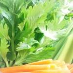セロリのダイエット効果や食べ方など方法とレシピ!摂取量は?