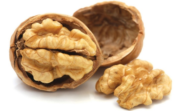 walnut cholesterol
