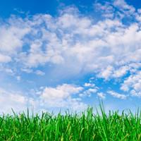 Воздух в доме – возможная причина многих болезней