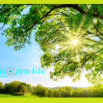 Walter Rieske – Wie kannst du deine Lebensenergie steigern? Heilpraktiker aufgepasst! (Video)