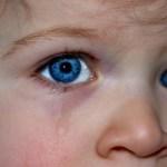 """Unglaublich und absurd! Gender-Sprachwissenschaftlerin will das Wort """"Kinderschänder"""" abschaffen"""