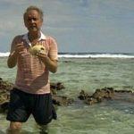 Warum die Welt doch nicht im Meer versinkt: Korallen lügen nicht!