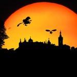Der Flug zum Blocksberg – magische Kräuter in der Walpurgisnacht