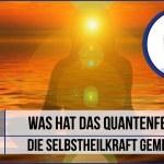 Der Sinn des Lebens – Was hat das Quantenfeld und die Selbstheilkraft gemeinsam? (+Video)