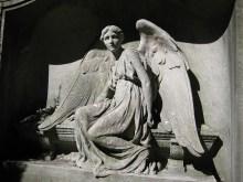 nyc-angel
