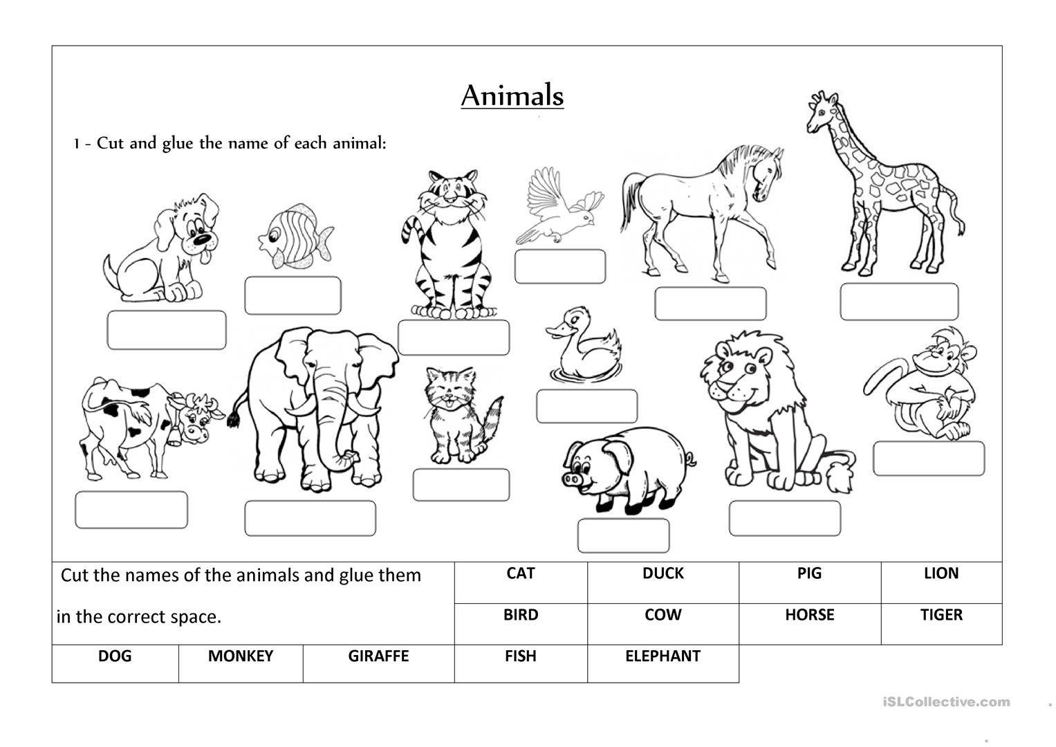 Preschool English Worksheets Age 5