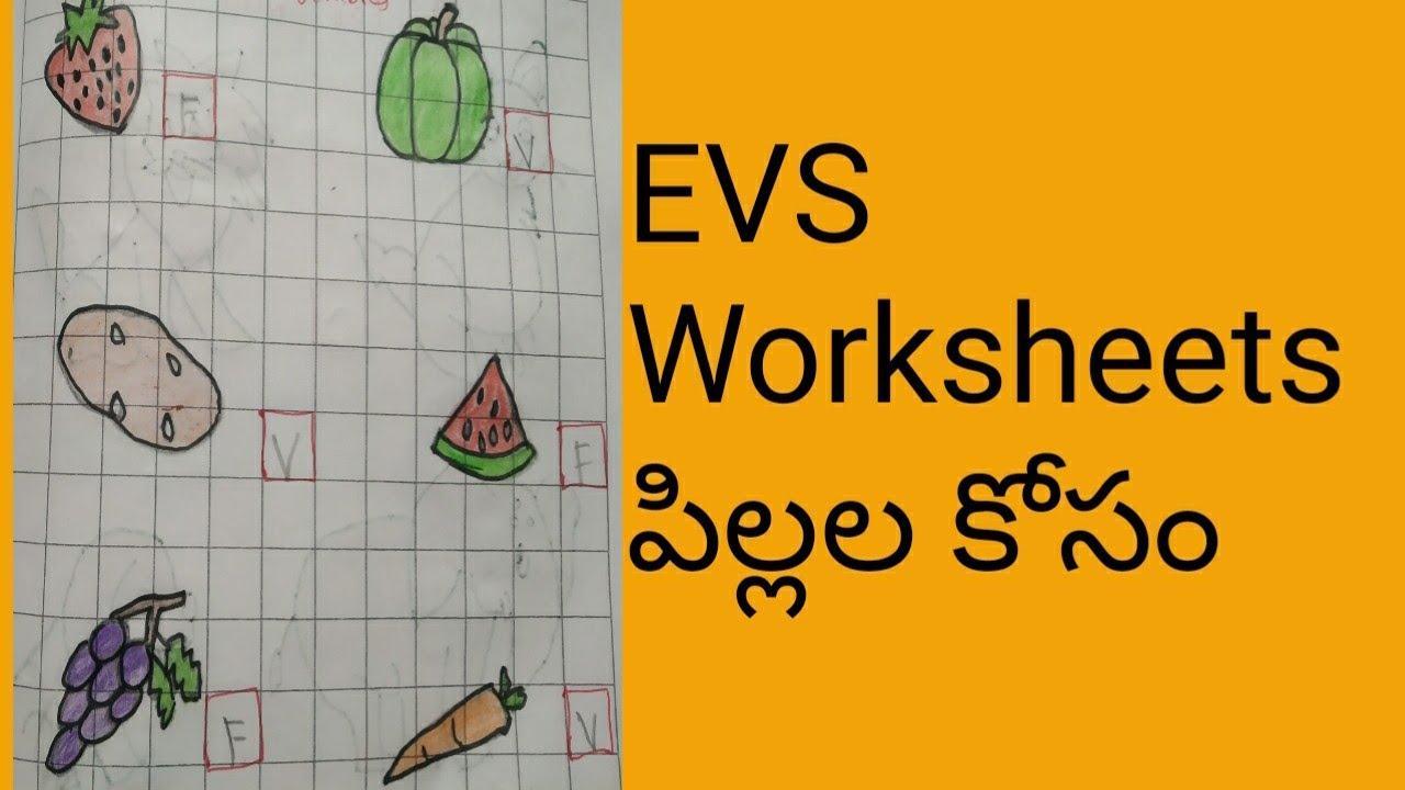 Preschool Evs Worksheets For Lkg