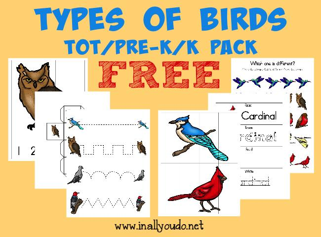 Preschool Worksheets Birds 3