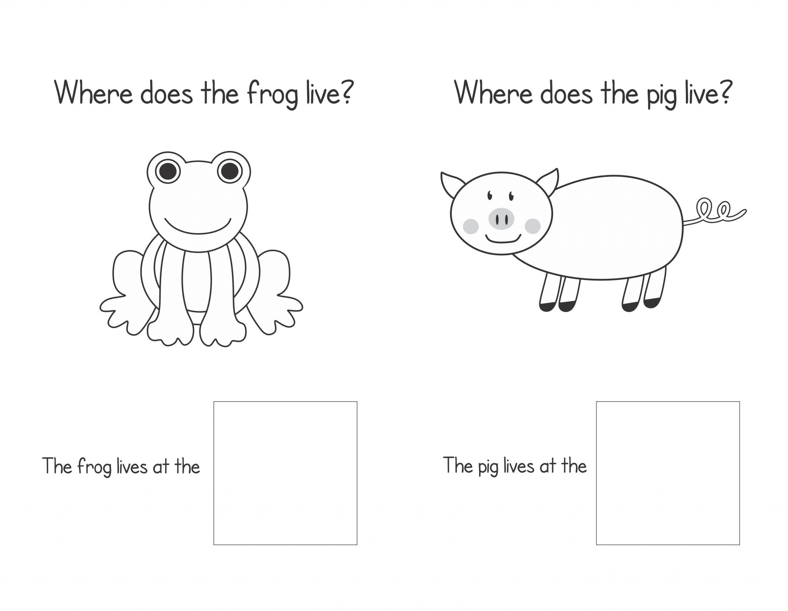 Preschool Wh Questions Worksheets 1