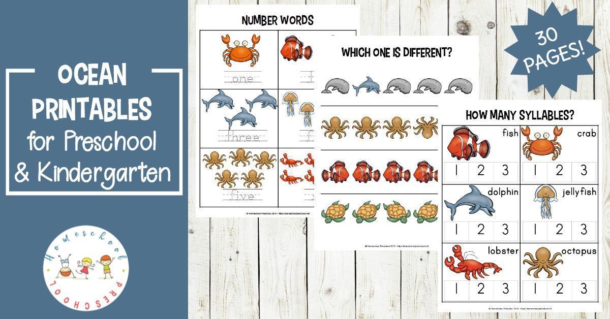 Preschool Worksheets Ocean Theme 3
