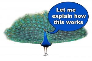 plumage talking