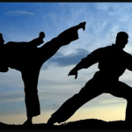 Difference between Kung Fu and Karate