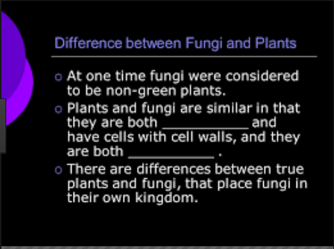 What is Difference between Plant Kingdom and Fungus Kingdom