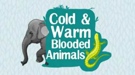 Difference-between-Cold-blooded-and-Worm-Blooded-Animals