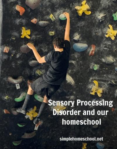sensory processing disorder and homeschool