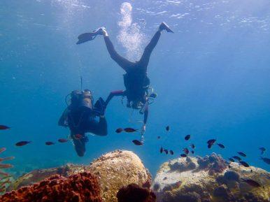 Un enfant explore les fonds marin avec sa mère en Martinique