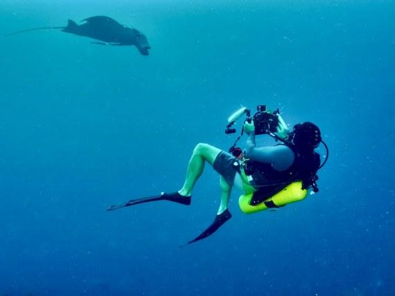 Photographier en plongée demande de pouvoir respecter certaines règles comme celle de se tenir éloigné des animaux marins tel que ce plongeur en Indonésie.