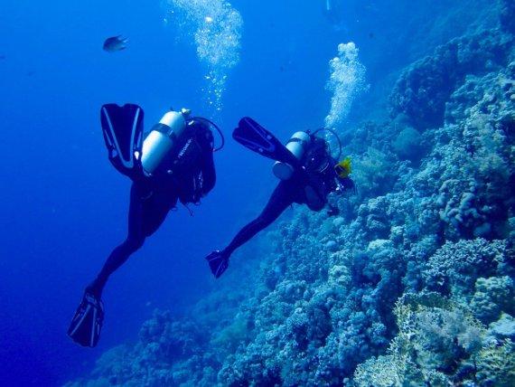 Un couple de plongeurs dans les eaux de la Mer Rouge
