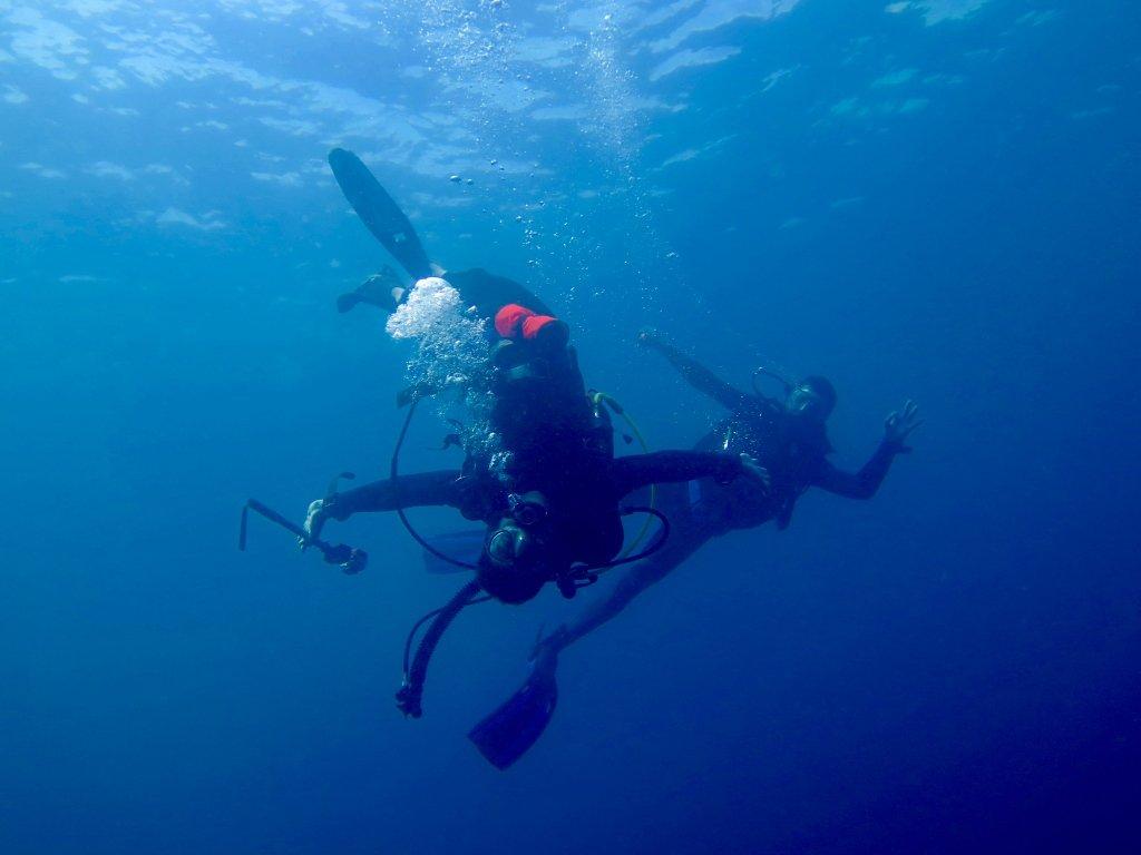 Deux plongeurs font des cabrioles sous l'eau