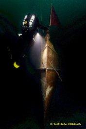 Des plongeurs sur une épave dans un environnement sombre