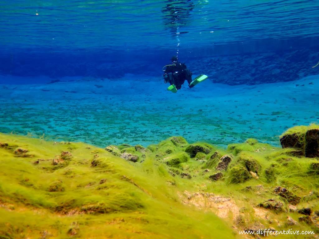 Un plongeur dans le lac à la sortie de la faille de Silfra