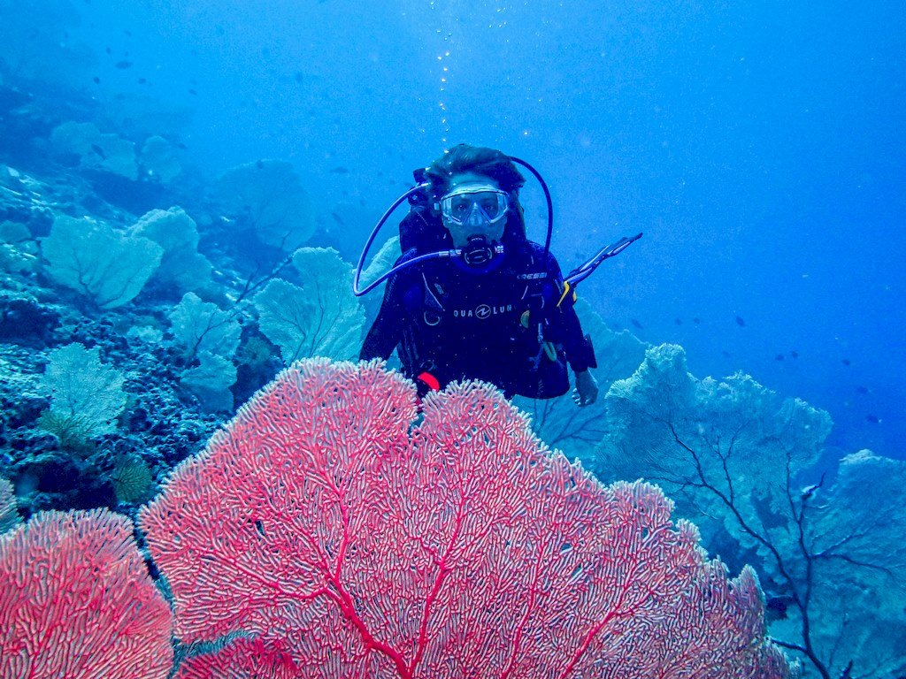 L'auteur du blog de plongée Different Dive derrière une gorgone à Mayotte